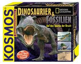 Dinosaurier & Fossilien